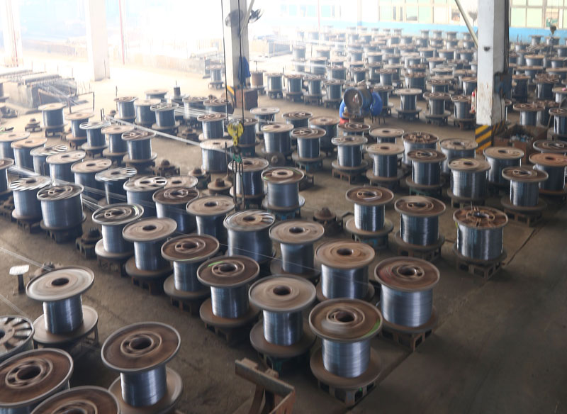 Galvanized Steel Wire Workshop